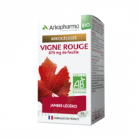Arkogélules Vigne Rouge Bio Gélules Fl/45 à Saint Priest