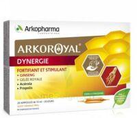 Arkoroyal Dynergie Ginseng Gelée Royale Propolis Solution Buvable 20 Ampoules/10ml à Saint Priest