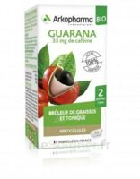 Arkogélules Guarana Bio Gélules Fl/45 à Saint Priest