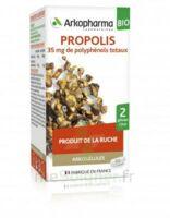 Arkogélules Propolis Bio Gélules Fl/45 à Saint Priest