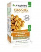 Arkogélules Fenugrec Bio Gélules Fl/40 à Saint Priest
