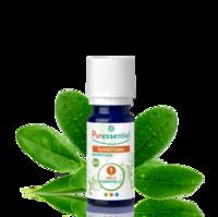 Puressentiel Huiles essentielles - HEBBD Ravintsara BIO* - 5 ml à Saint Priest