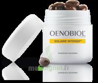Oenobiol Solaire Intensif Caps Peau Normale Pot/30 à Saint Priest