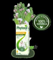 Phytoxil Toux Sans Sucre Sirop Adulte Enfant +2 Ans Fl/120ml à Saint Priest